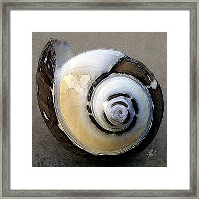 Seashells Spectacular No 3 Framed Print by Ben and Raisa Gertsberg