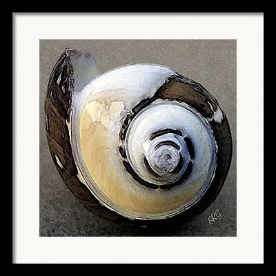 Round Shell Framed Prints