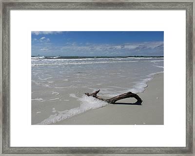 Seashore Driftwood Framed Print by Rosie Brown