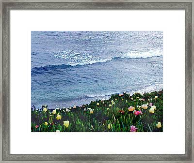 Seaside Ice Plants Framed Print by Elaine Plesser