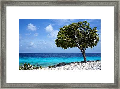 Seaside Framed Print