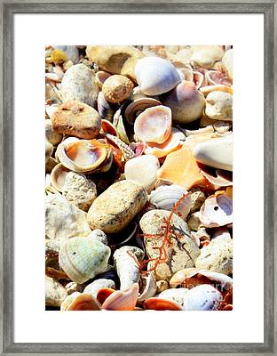 Seaside Memories Framed Print