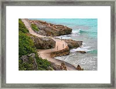 Seaside Path Framed Print by Charline Xia
