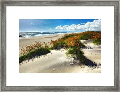 Seaside Serenity I - Outer Banks Framed Print by Dan Carmichael