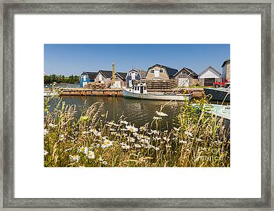 Seaside View Of Prince Edward Island Framed Print by Elena Elisseeva