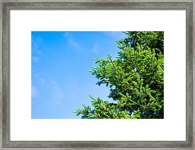 Season Greetings - Featured 3 Framed Print by Alexander Senin