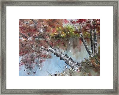 Season Of Change Framed Print by Stephanie Sodel