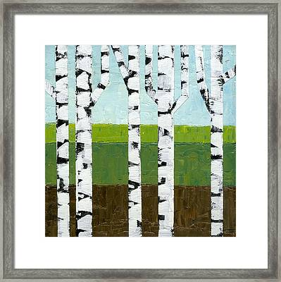 Seasonal Birches - Summer Framed Print by Michelle Calkins