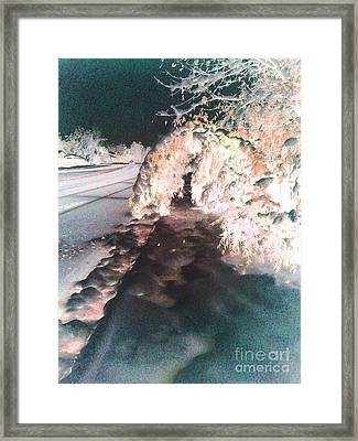 Seasonal Change Framed Print