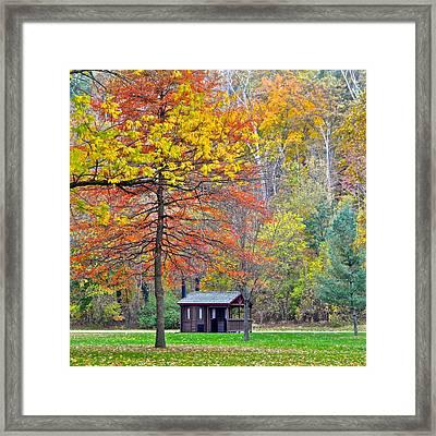 Seasonal Sensation Framed Print