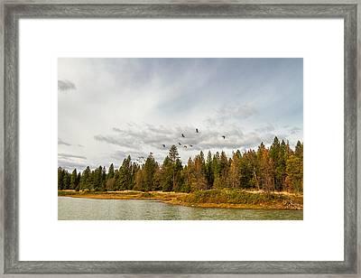 Seasonal Voyage Framed Print by Randy Wood