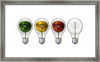 Seasoned Light Bulbs Framed Print