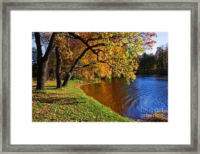 Framed Print featuring the photograph Seasons by Boon Mee