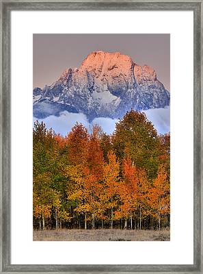 Seasons Change Framed Print by Aaron Whittemore