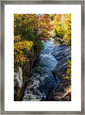 Seasons Change In Clare Framed Print