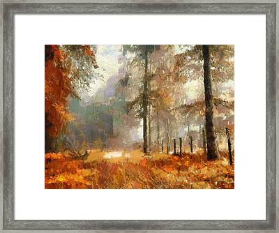 Seasons Come Seasons Go Framed Print
