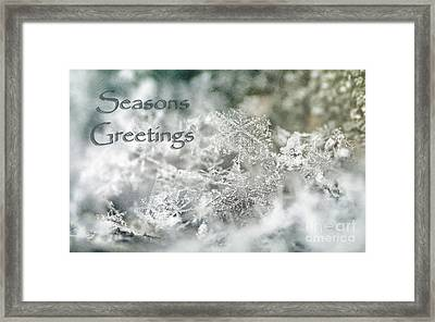 Seasons Greetings Framed Print by Darren Fisher