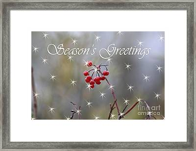 Seasons Greetings Red Berries Framed Print by Cathy  Beharriell