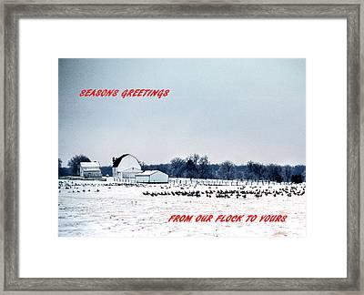 Seasons Greetings Framed Print