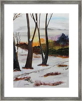 Seasons Framed Print by Jack G  Brauer