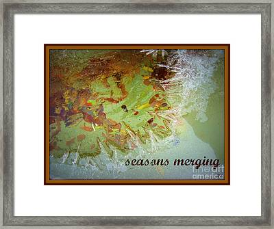 Framed Print featuring the photograph Seasons Merging by Heidi Manly