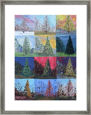 Seasons Of A Dawn Redwood - Sold Framed Print by Judith Espinoza