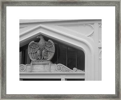 Framed Print featuring the photograph Seated Eagle by Adria Trail