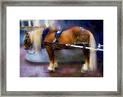 Seattle Carriage Horse Framed Print