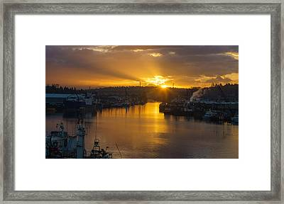 Seattle Ship Canal Sunstar Morning Framed Print by Mike Reid