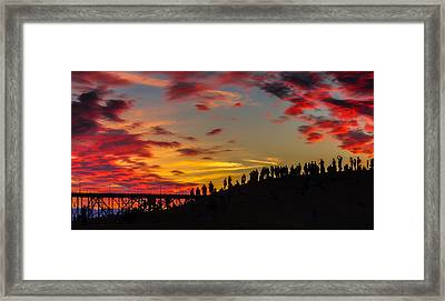 Seattle Summer Solstice Framed Print