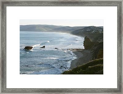 Seaward Sentinel Framed Print by Amanda Holmes Tzafrir