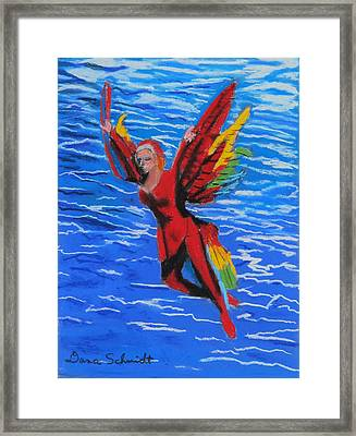 Seaworld Acrobat Framed Print