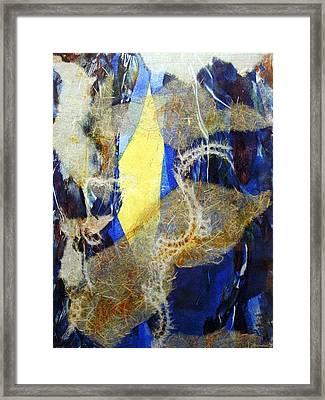 Seaworld Framed Print by Alexandra Jordankova