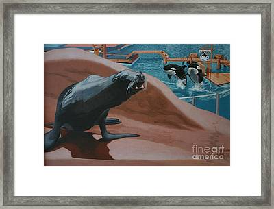 Seaworld Framed Print
