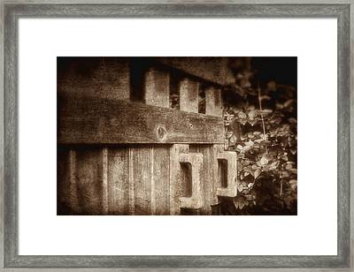 Secluded Garden Framed Print by Tom Mc Nemar
