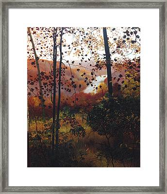 Secluded View Framed Print by David Bottini