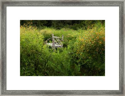 Seclusion Framed Print by Bill Wakeley