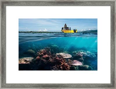 Second Dive Framed Print