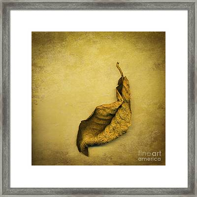 Second In Line Framed Print by Jan Bickerton