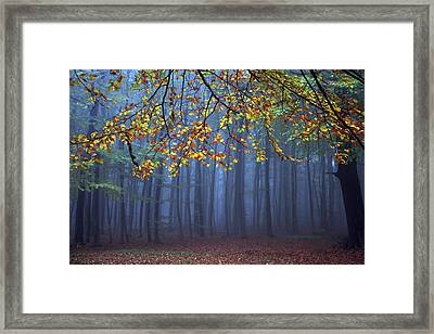 Seconds Before The Light Went Out Framed Print by Roeselien Raimond