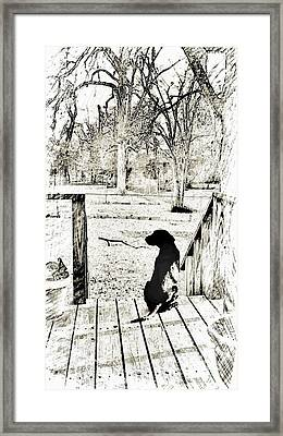 Seconds With Trip Framed Print