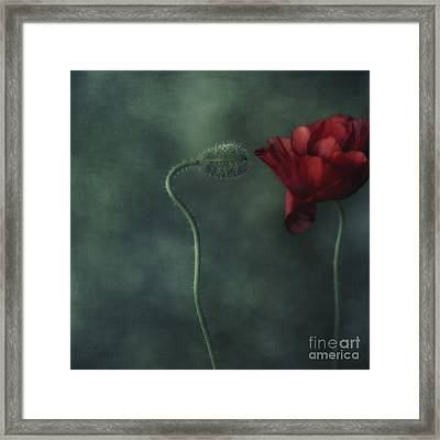Secret Affair Framed Print by Priska Wettstein