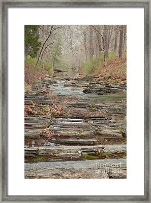 Secret Creek Framed Print by Iris Greenwell