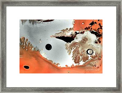 Secret Discovery Framed Print