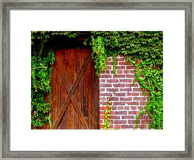Framed Print featuring the photograph Secret Door by Jeff Lowe