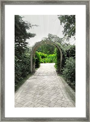Secret Garden Framed Print by Andrea Dale