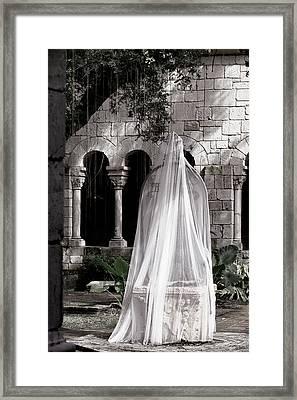 Secret Garden Framed Print by Joanna Madloch