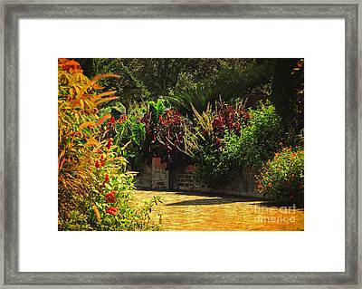 Framed Print featuring the photograph Secret Garden Path by Kathy Baccari