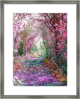 Framed Print featuring the photograph Secret Garden by Vicki Spindler