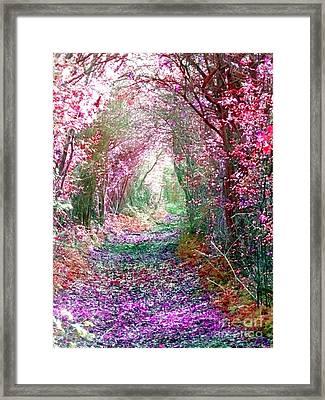 Secret Garden Framed Print by Vicki Spindler